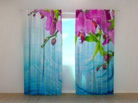 Lenyűgöző orchideák