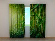 Bambusz erdő 2