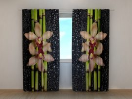 Bambuszok, orchideák és esőcseppek