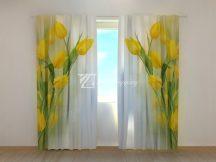 Gyönyörű sárga tulipánok