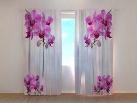 Kiolibri orchideák 2