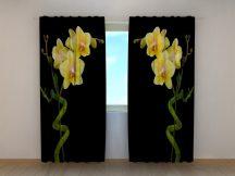 Bambusz és orchidea duettje