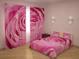 Nagy rózsaszín rózsa