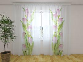 Csodálatos rózsaszín tulipánok