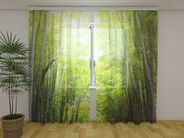 Bambusz erdő naplemente idején