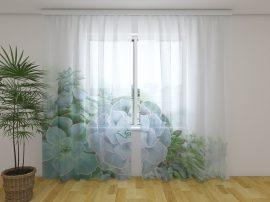 Zöld lédús növények