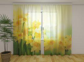 Sárga nárciszok 2