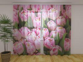 Lenyűgöző tulipánok