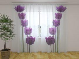 Tavaszi tulipánok