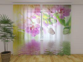 Nyári orchideák