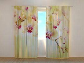 Aranyszínű orchideák