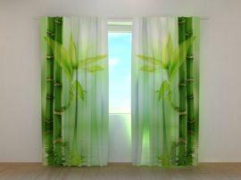 Zöld bambuszok