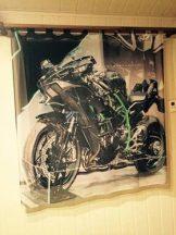 Kawasaki motor