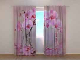 Liliom orchideák