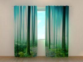 Varázslatos erdő