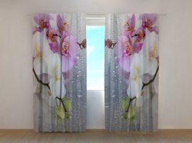 Orchideák és eső