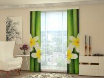 Bambusz és frangipani