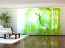 Lenyűgöző bambusz