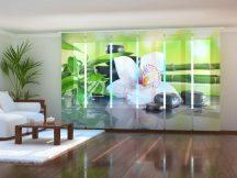 Bambusz ágak és fehér orchidea