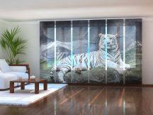 Fehér tigris egy sziklán
