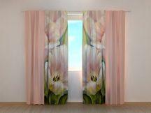 Rózsaszín tulipánok