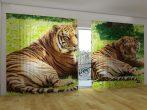 Bengáli tigrisek