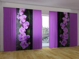 Orchideák fekete háttérrel
