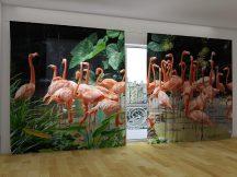 Rózsaszín flamingó