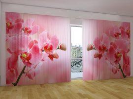 Rózsaszín orchideák