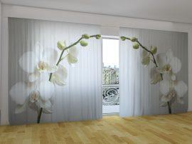 Rigai orchidea