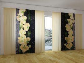Napbarnított orchideák