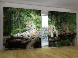 Fiatal tigrisek