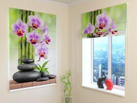 Orchideák és kövek