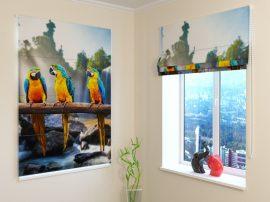 Három papagáj
