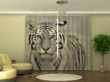 Fehér tigris (290X245cm)