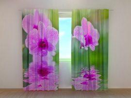 Három orchidea