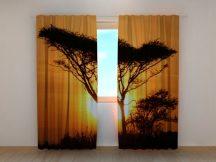Fa naplementében