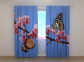 Két pillangó