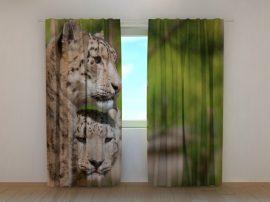 Két leopárd