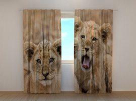 Két oroszlánkölyök
