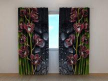 Borszínű orchideák