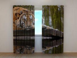 A tigris bölcsessége