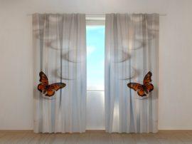 Zen pillangók
